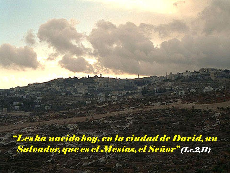 Les ha nacido hoy, en la ciudad de David, un Salvador, que es el Mesías, el Señor (Lc.2,11)