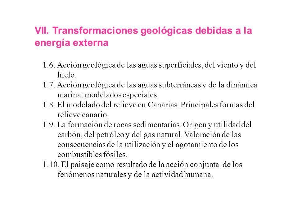 VII. Transformaciones geológicas debidas a la energía externa