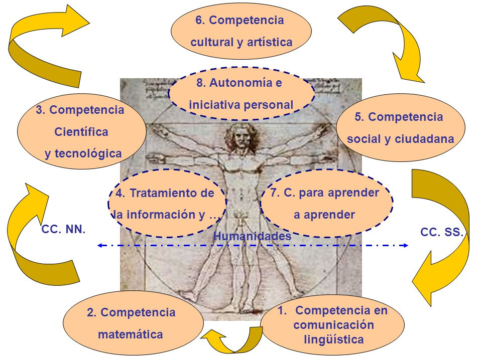 6. Competencia cultural y artística. 8. Autonomía e. iniciativa personal. 3. Competencia. Científica.
