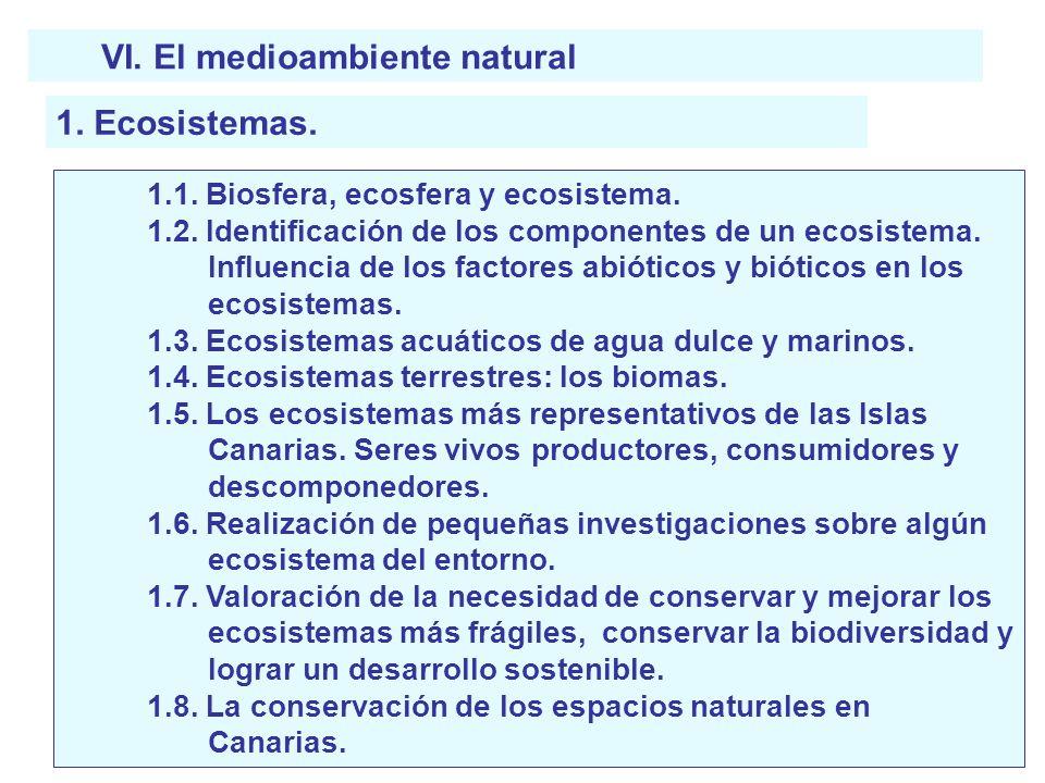 VI. El medioambiente natural