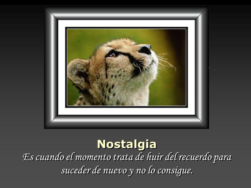 Nostalgia Es cuando el momento trata de huir del recuerdo para suceder de nuevo y no lo consigue.