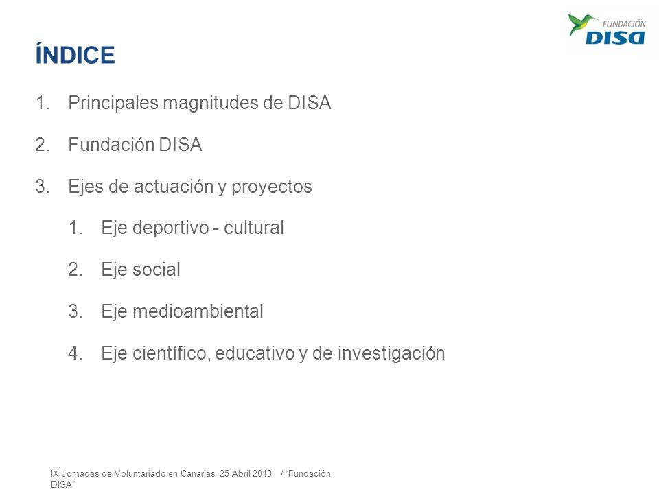 ÍNDICE Principales magnitudes de DISA Fundación DISA