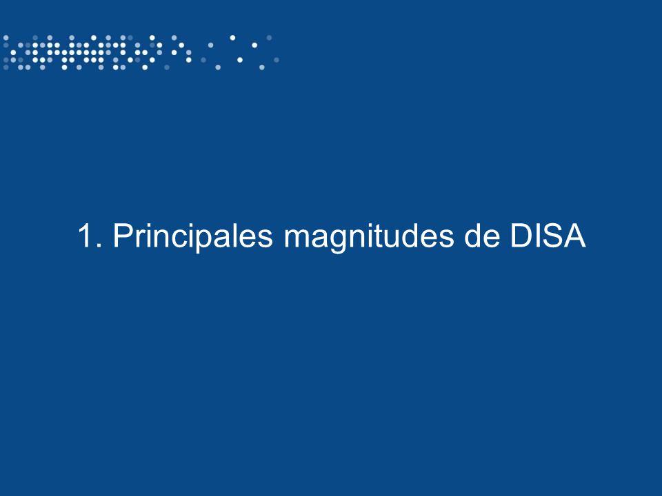 1. Principales magnitudes de DISA