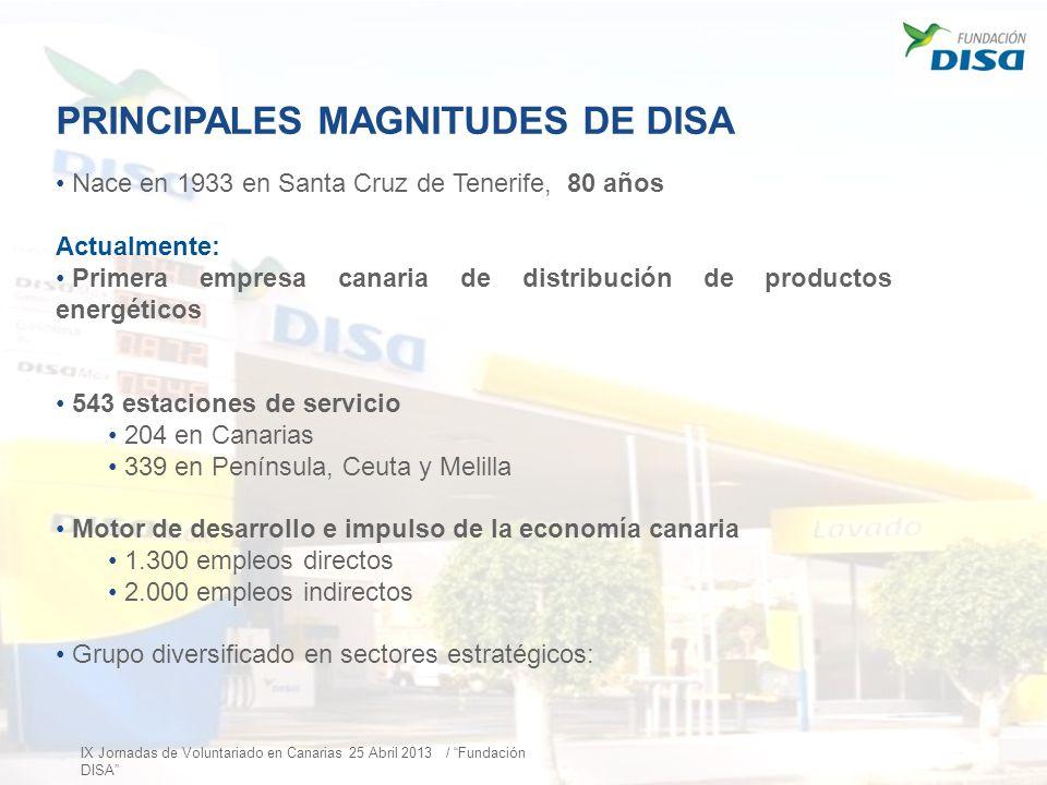 PRINCIPALES MAGNITUDES DE DISA