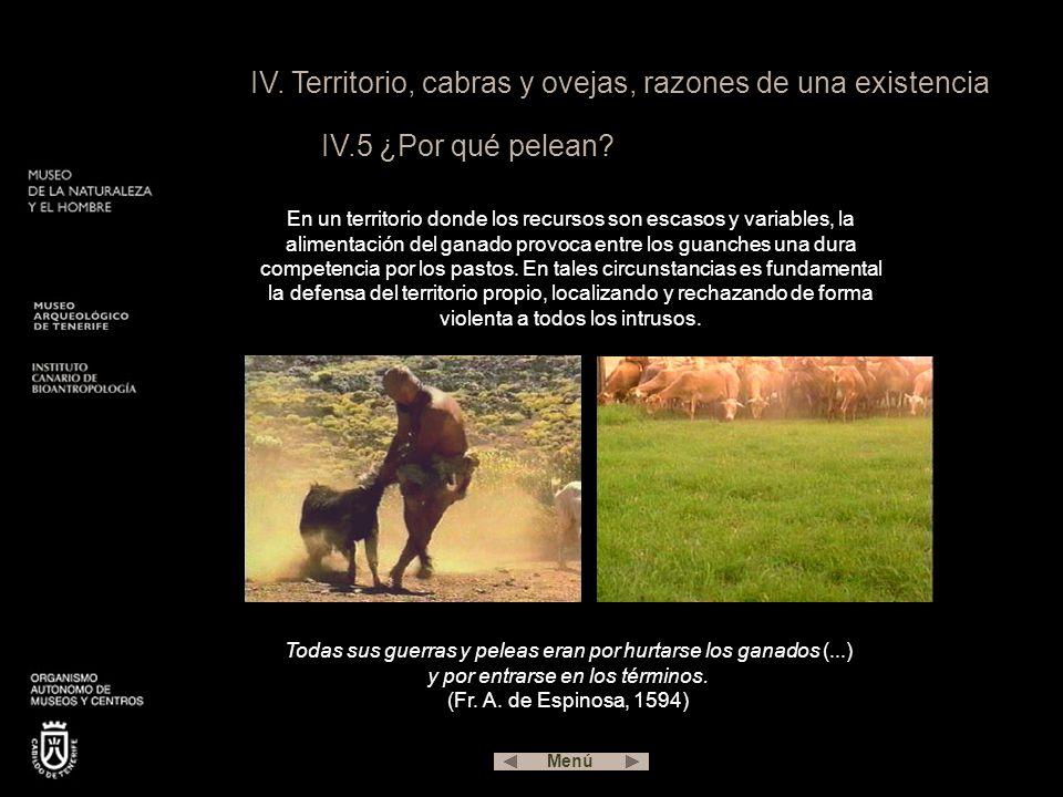 IV. Territorio, cabras y ovejas, razones de una existencia IV