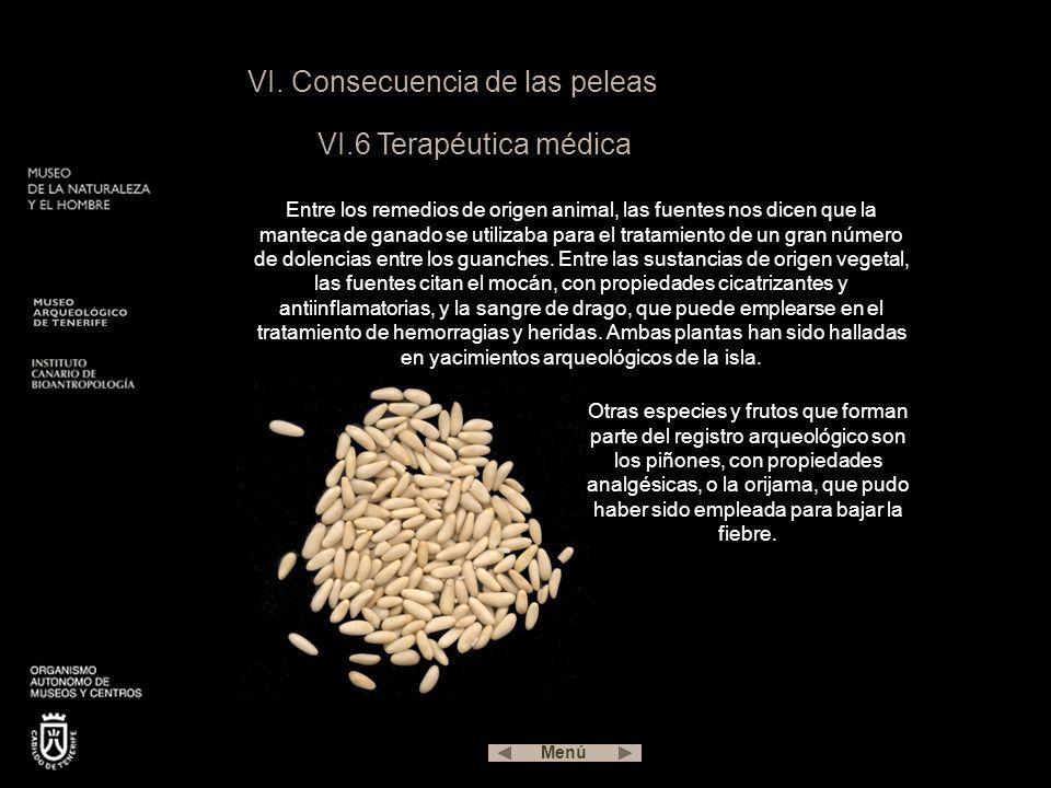 VI. Consecuencia de las peleas VI.6 Terapéutica médica