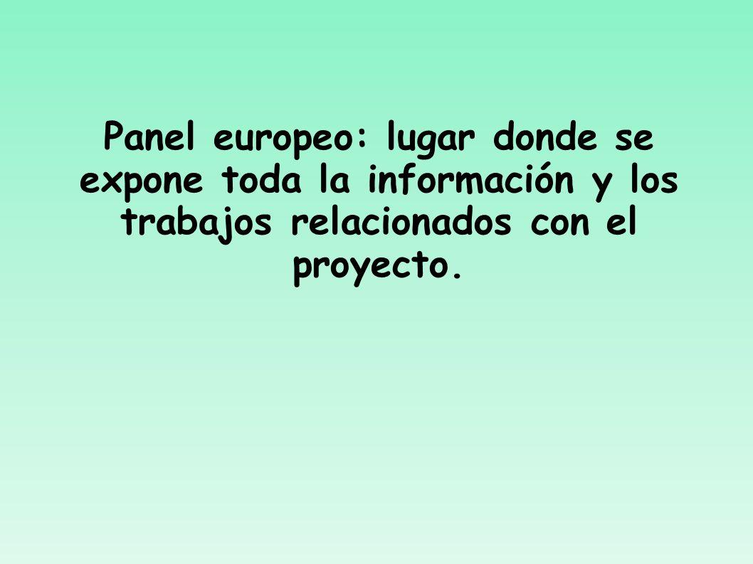 Panel europeo: lugar donde se expone toda la información y los trabajos relacionados con el proyecto.