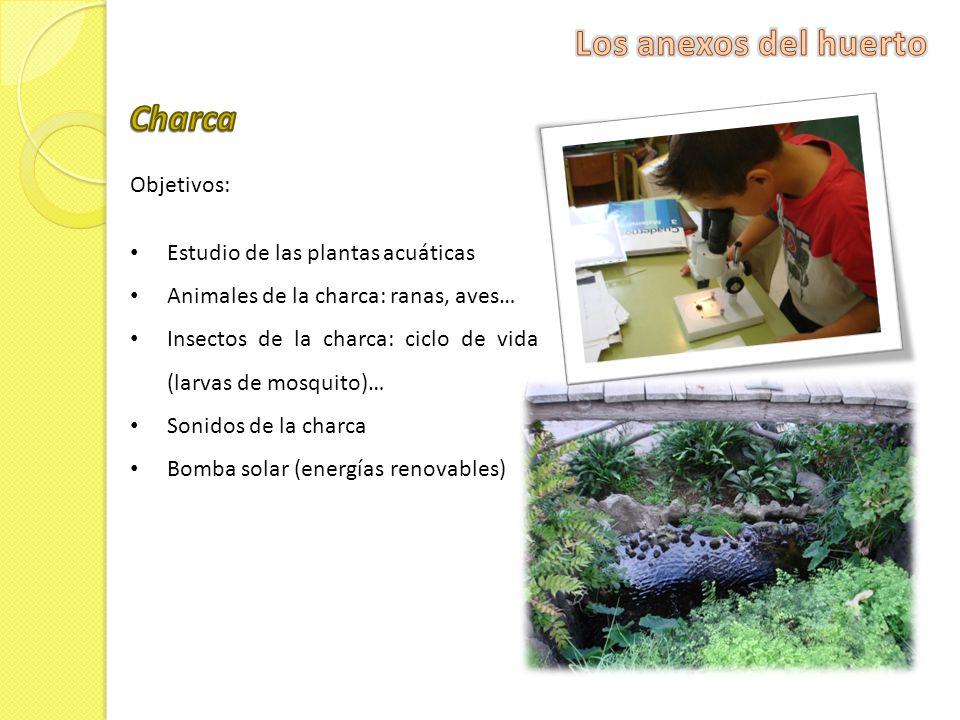 Los anexos del huerto Charca Objetivos: