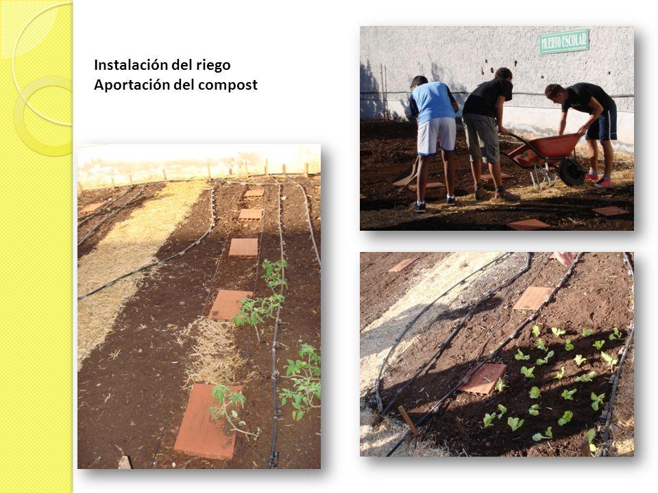 Instalación del riego Aportación del compost