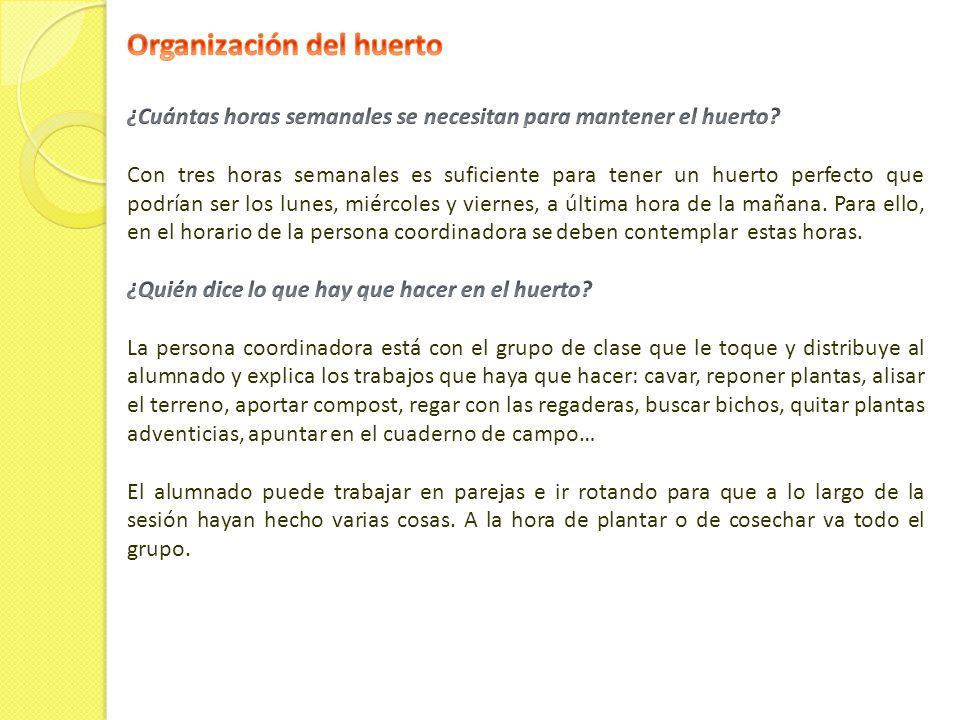 Organización del huerto
