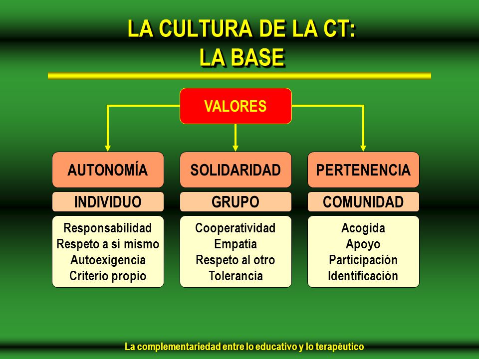 LA CULTURA DE LA CT: LA BASE