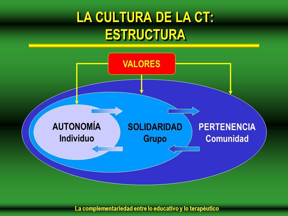 LA CULTURA DE LA CT: ESTRUCTURA