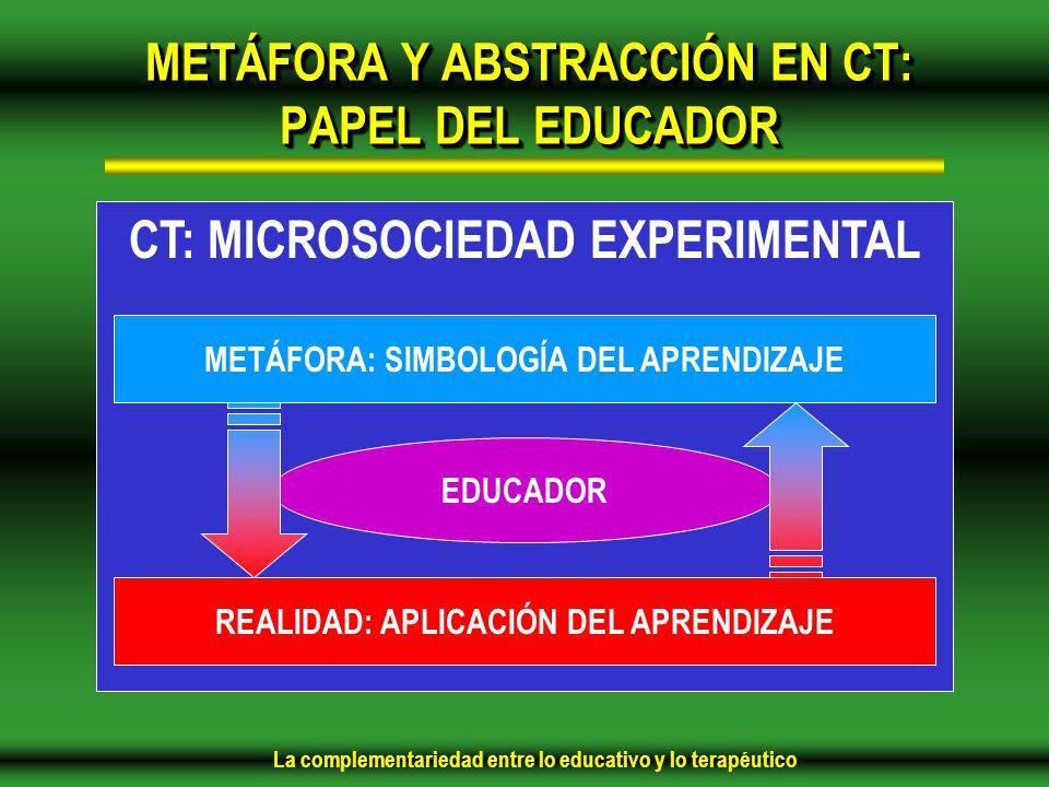 METÁFORA Y ABSTRACCIÓN EN CT: PAPEL DEL EDUCADOR