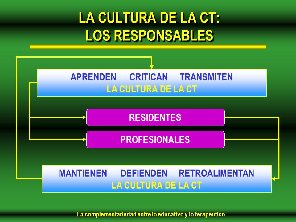 LA CULTURA DE LA CT: LOS RESPONSABLES
