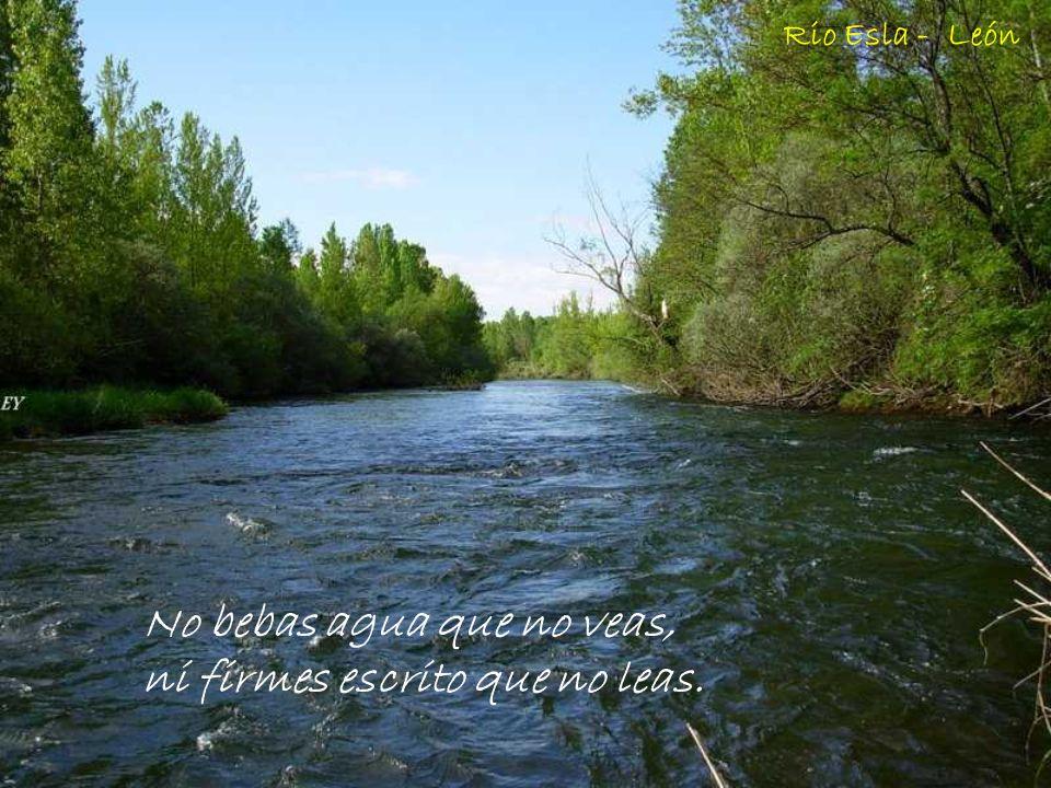 No bebas agua que no veas, ni firmes escrito que no leas.
