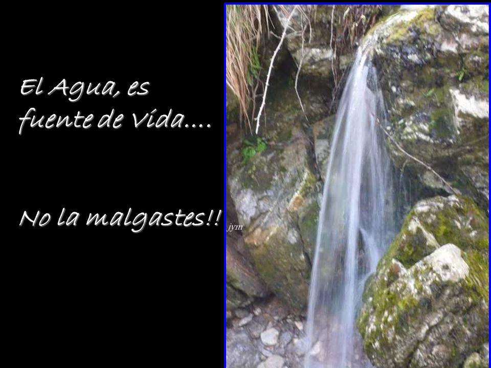 El Agua, es fuente de Vida….