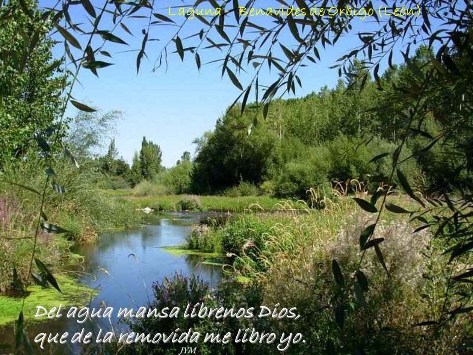 Del agua mansa líbrenos Dios, que de la removida me libro yo.