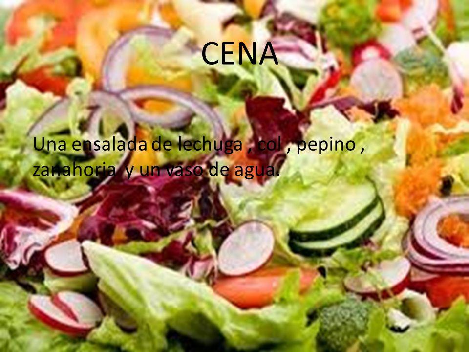 CENA Una ensalada de lechuga , col , pepino , zanahoria y un vaso de agua.