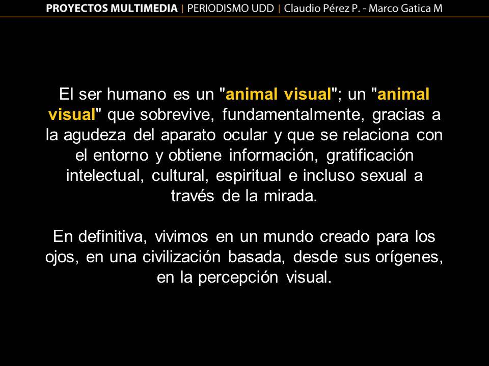 El ser humano es un animal visual ; un animal visual que sobrevive, fundamentalmente, gracias a la agudeza del aparato ocular y que se relaciona con el entorno y obtiene información, gratificación intelectual, cultural, espiritual e incluso sexual a través de la mirada.