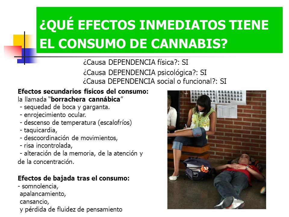 ¿QUÉ EFECTOS INMEDIATOS TIENE EL CONSUMO DE CANNABIS
