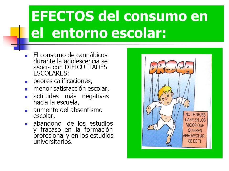 EFECTOS del consumo en el entorno escolar: