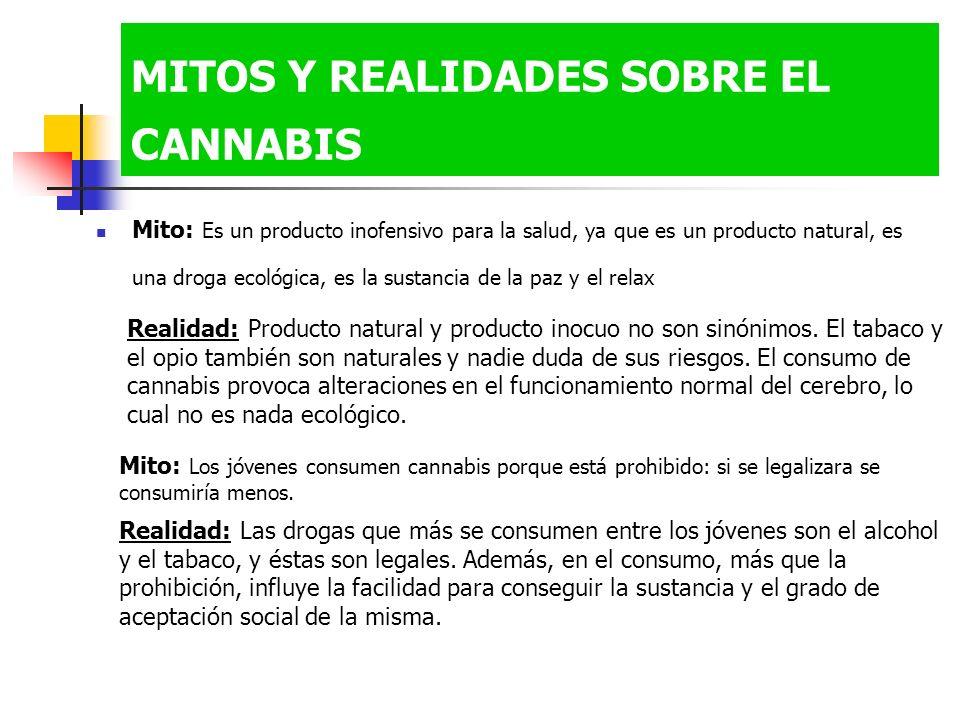 MITOS Y REALIDADES SOBRE EL CANNABIS