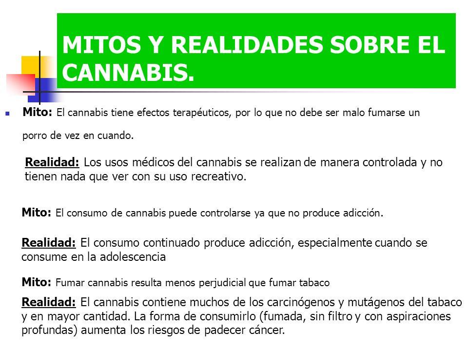 MITOS Y REALIDADES SOBRE EL CANNABIS.