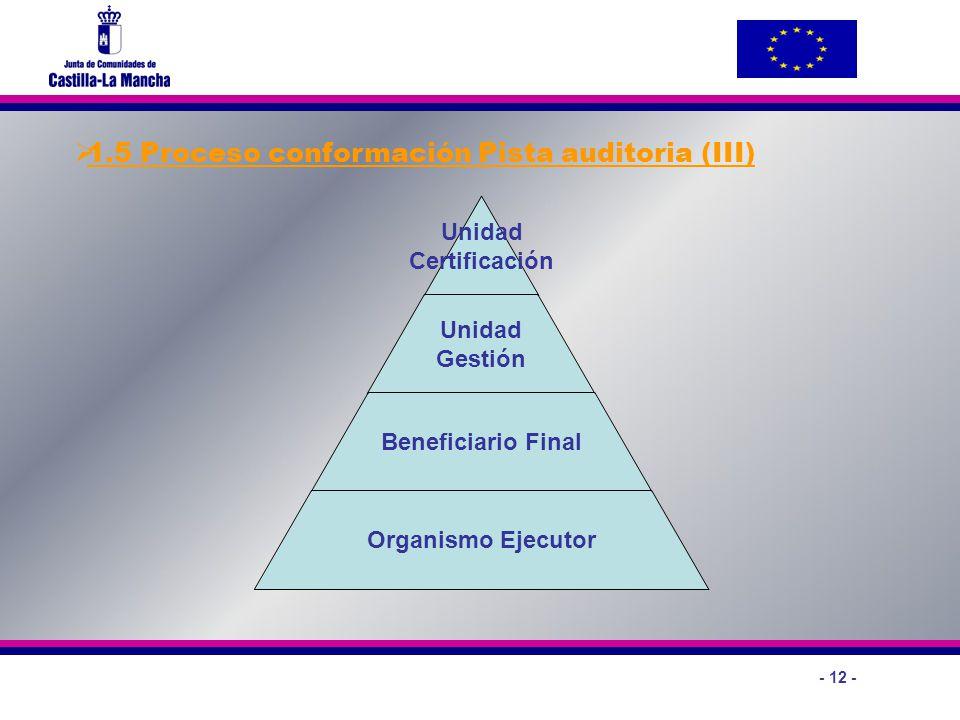 1.5 Proceso conformación Pista auditoria (III)