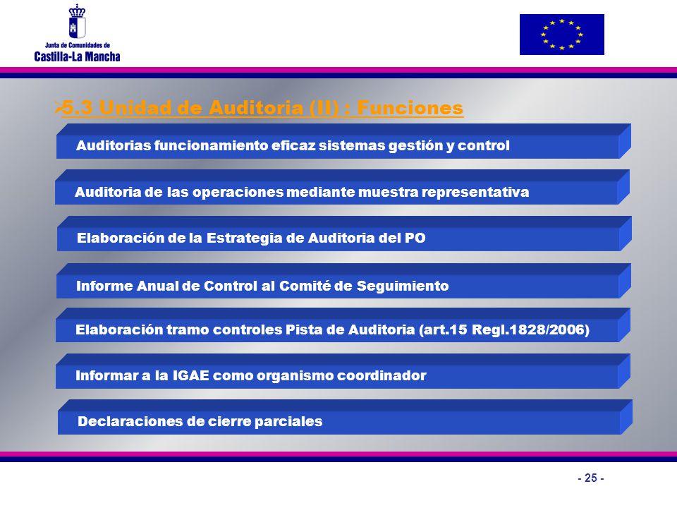 5.3 Unidad de Auditoria (II) : Funciones