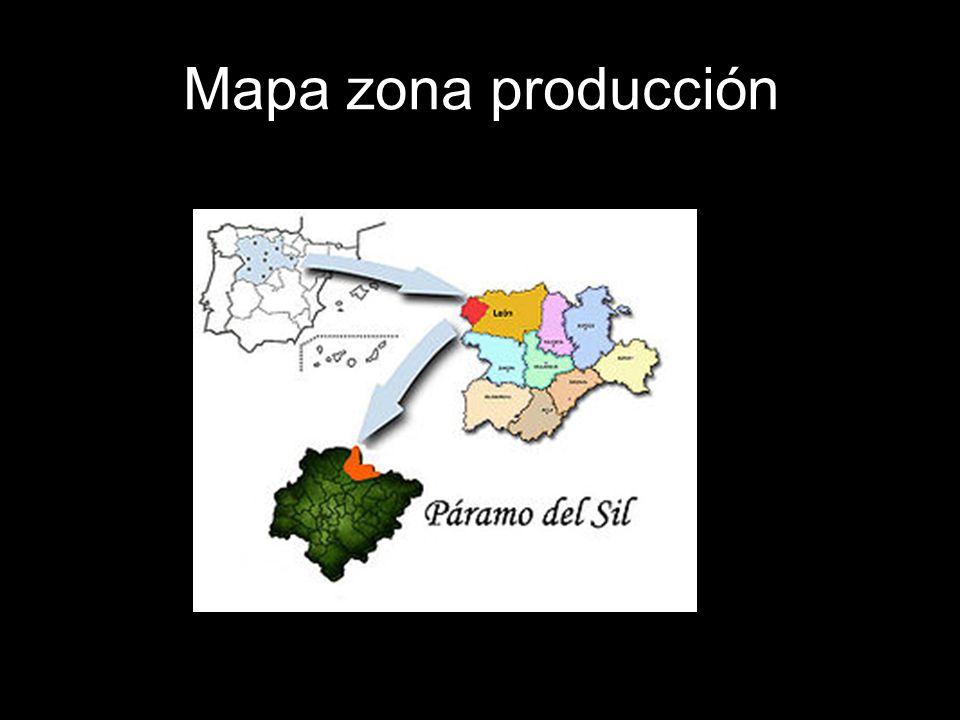 Mapa zona producción
