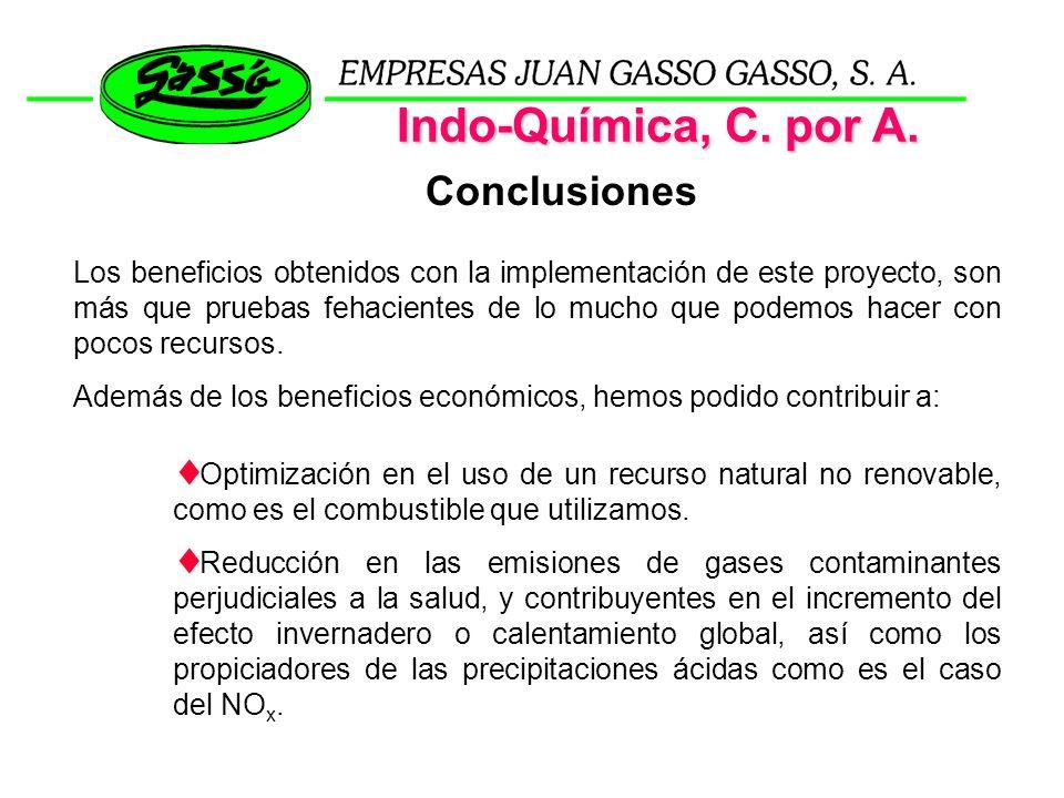 Indo-Química, C. por A. Conclusiones