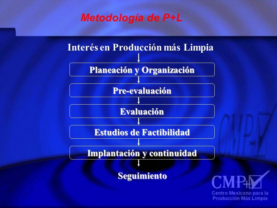 Metodología de P+L Interés en Producción más Limpia