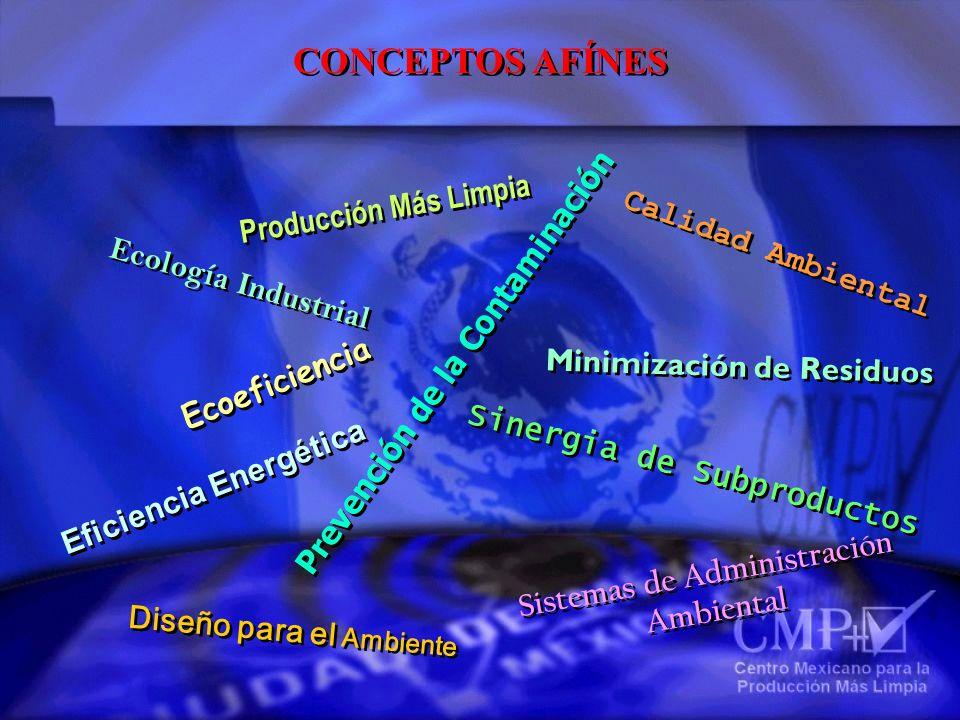 CONCEPTOS AFÍNES Producción Más Limpia Calidad Ambiental