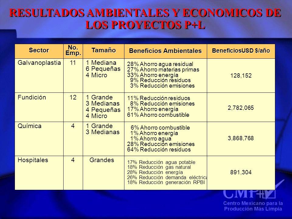 RESULTADOS AMBIENTALES Y ECONOMICOS DE LOS PROYECTOS P+L