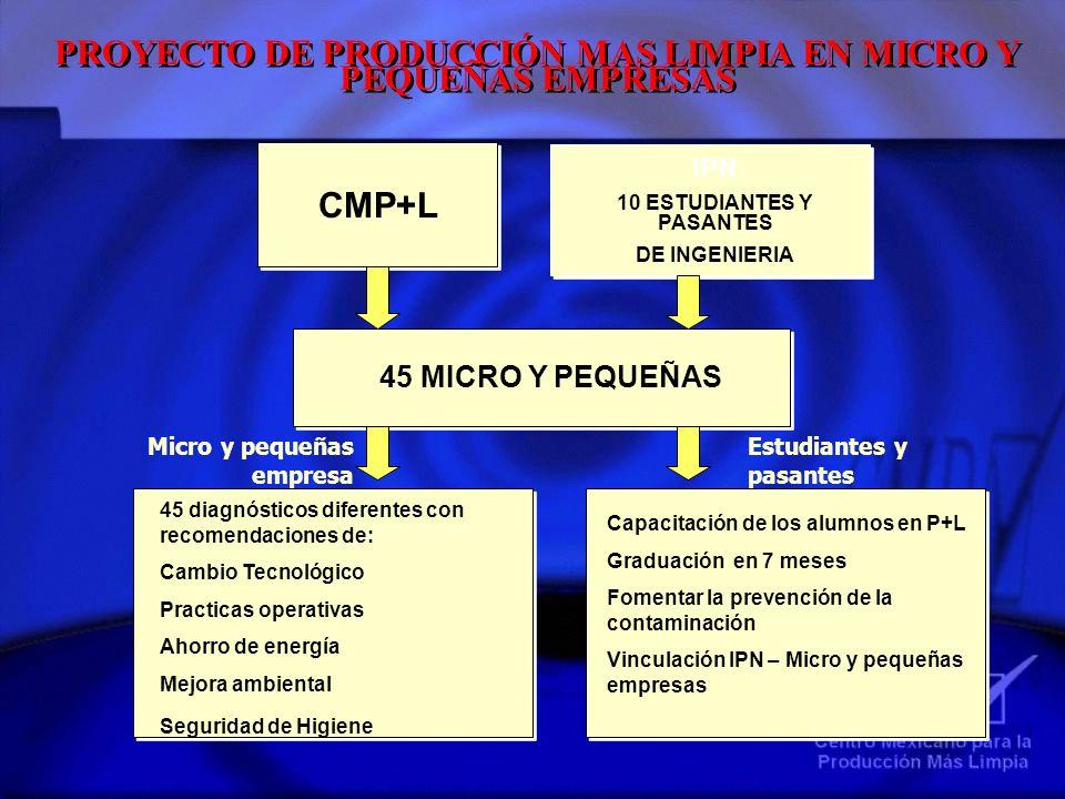 PROYECTO DE PRODUCCIÓN MAS LIMPIA EN MICRO Y PEQUEÑAS EMPRESAS