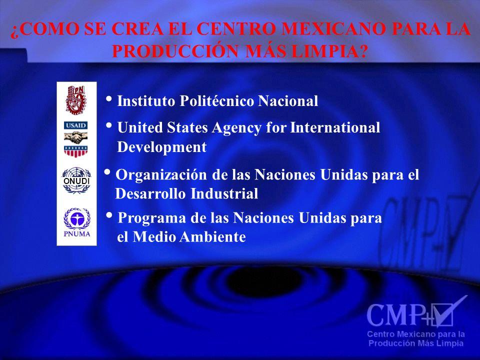 ¿COMO SE CREA EL CENTRO MEXICANO PARA LA PRODUCCIÓN MÁS LIMPIA