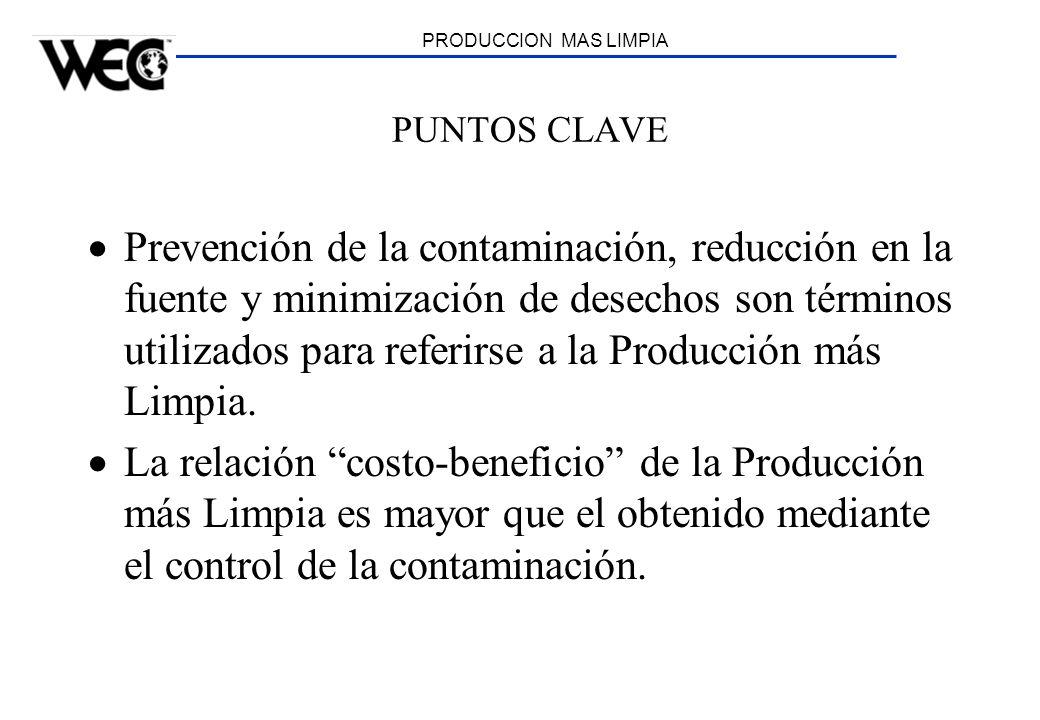 PRODUCCION MAS LIMPIA PUNTOS CLAVE.