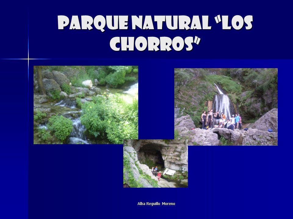 Parque natural los chorros