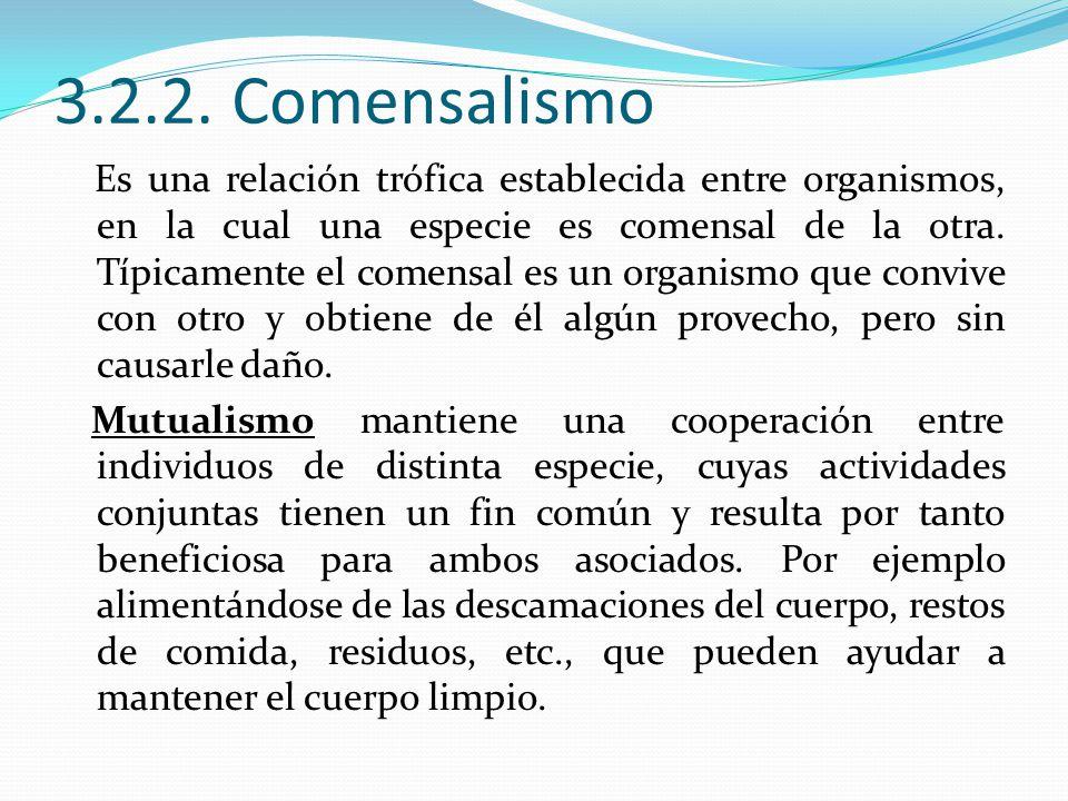 3.2.2. Comensalismo