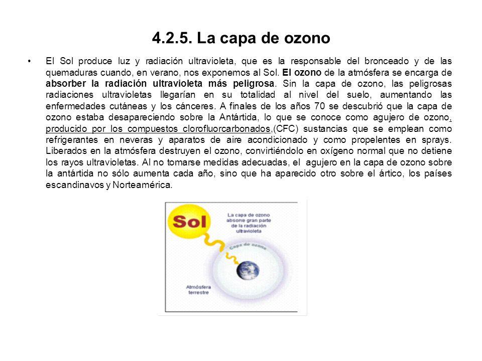 4.2.5. La capa de ozono