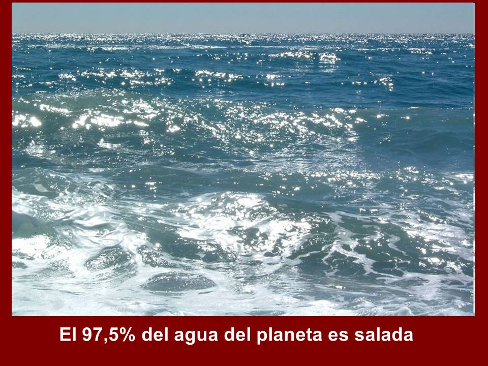 El 97,5% del agua del planeta es salada