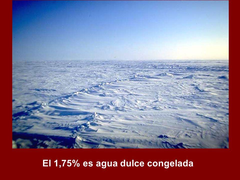 El 1,75% es agua dulce congelada
