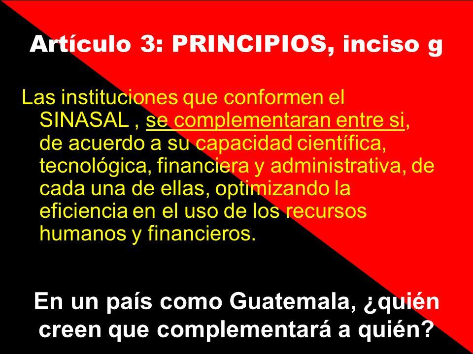 Artículo 3: PRINCIPIOS, inciso g
