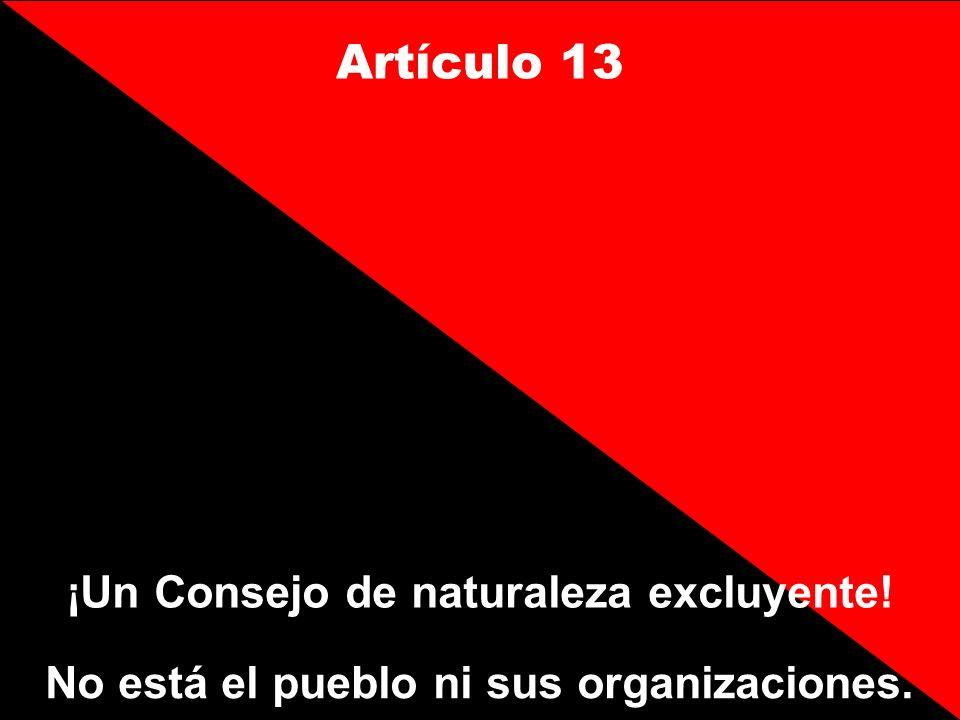 Artículo 13 ¡Un Consejo de naturaleza excluyente!
