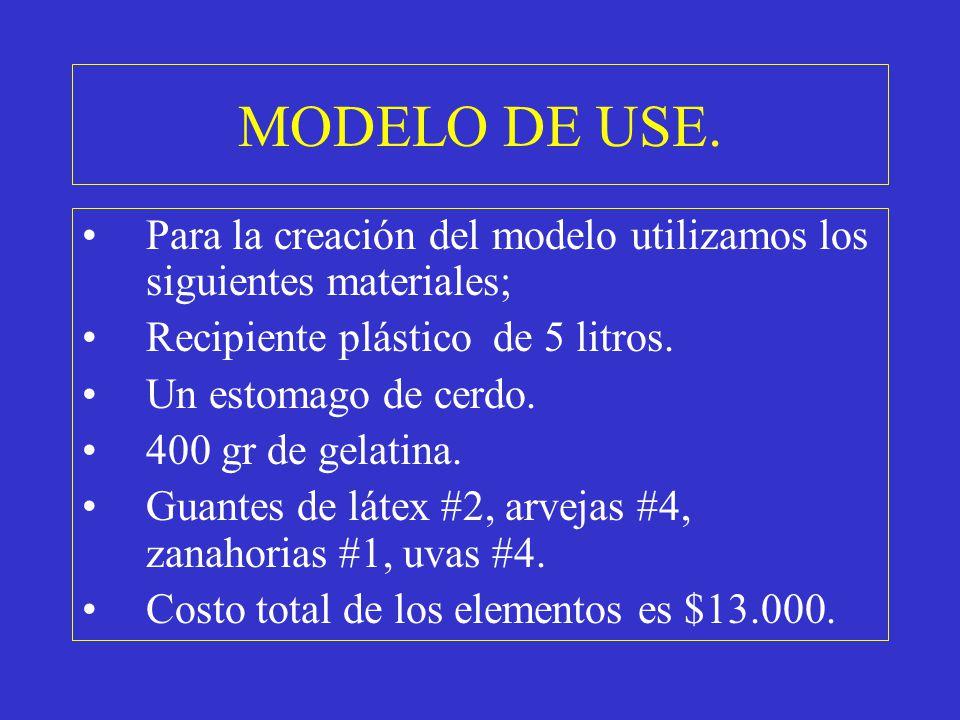 MODELO DE USE. Para la creación del modelo utilizamos los siguientes materiales; Recipiente plástico de 5 litros.