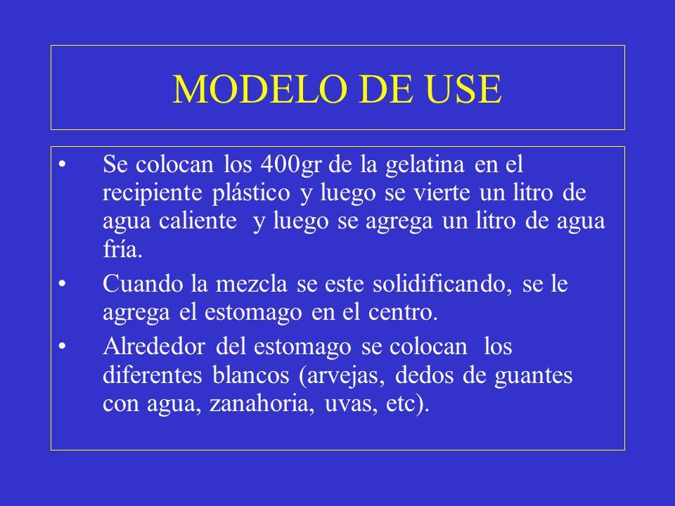 MODELO DE USE