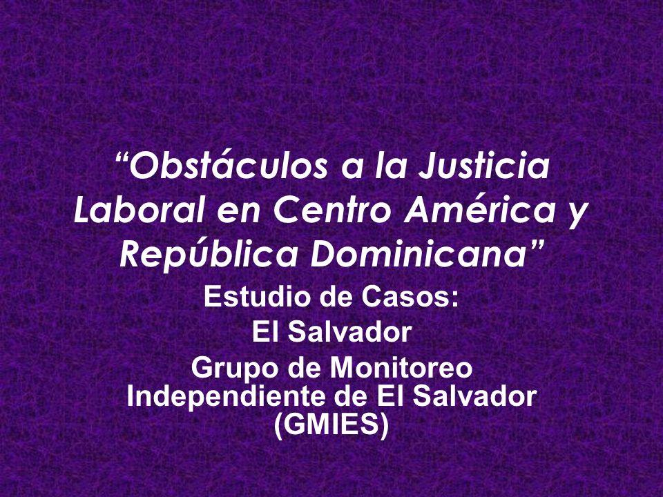 Grupo de Monitoreo Independiente de El Salvador (GMIES)
