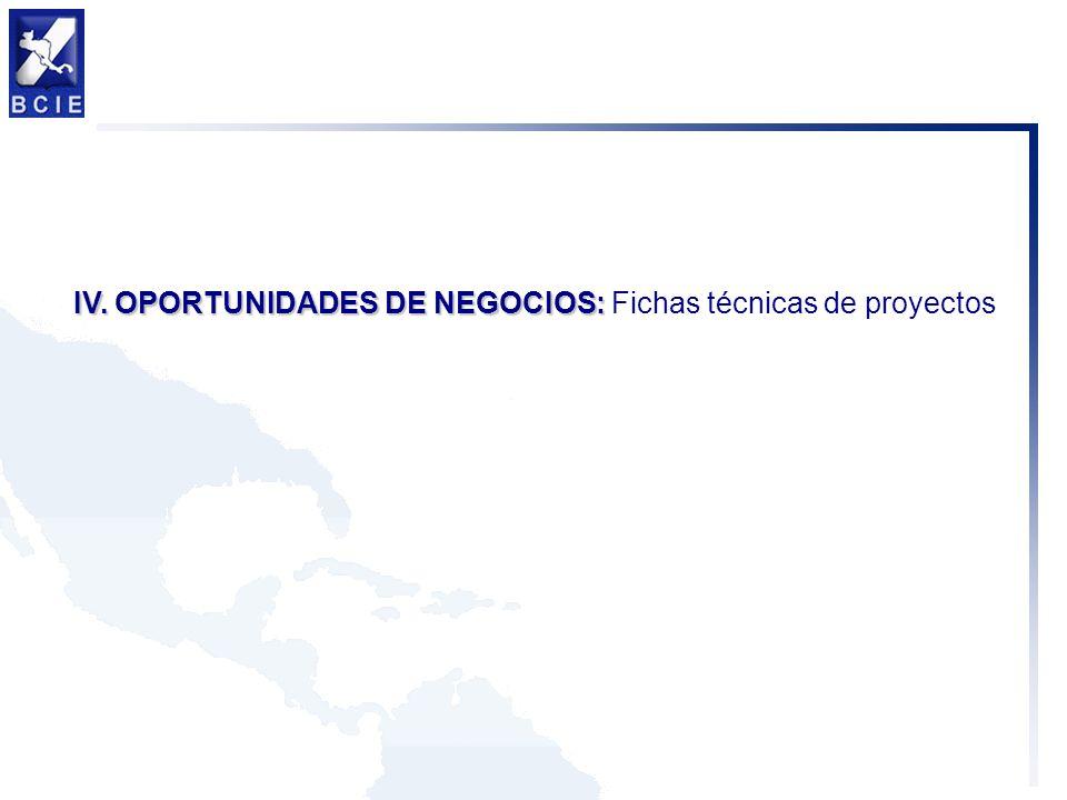 IV. OPORTUNIDADES DE NEGOCIOS: Fichas técnicas de proyectos