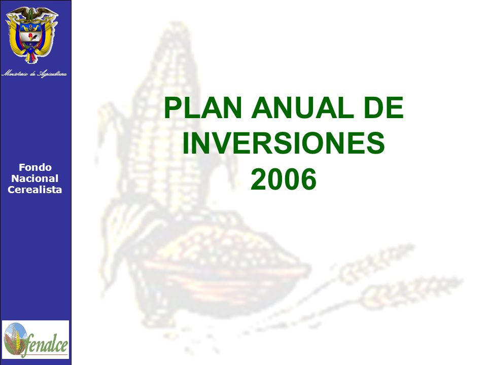 PLAN ANUAL DE INVERSIONES 2006