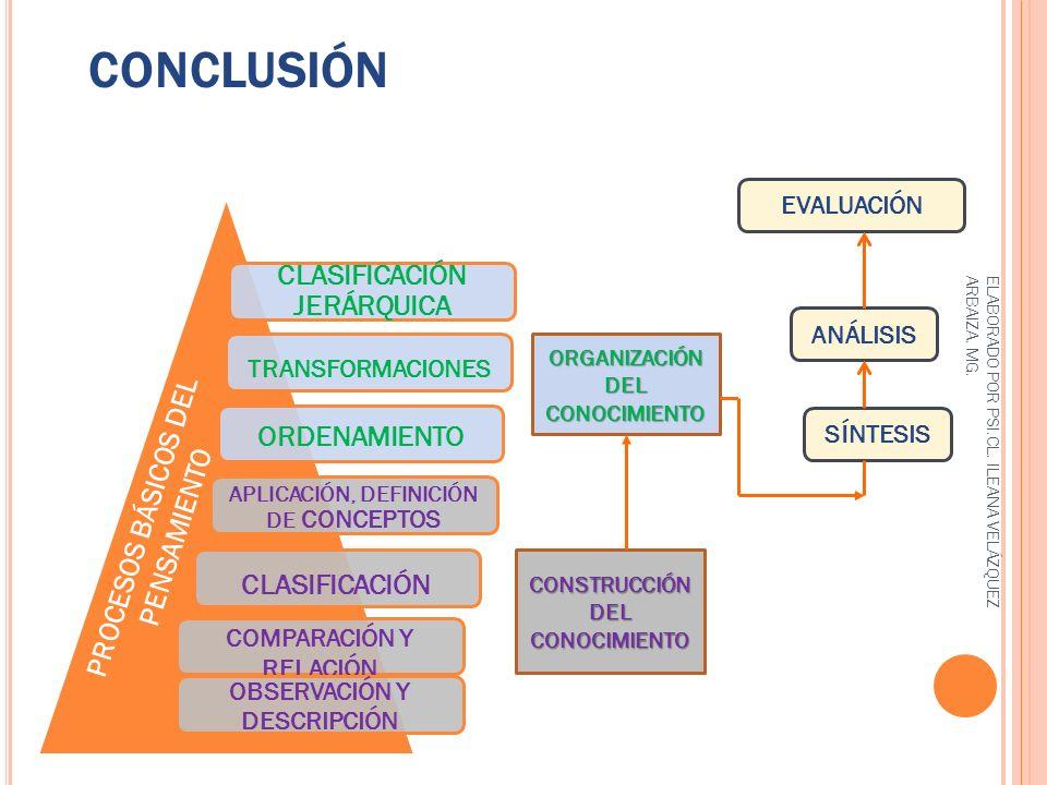 CONCLUSIÓN CLASIFICACIÓN JERÁRQUICA ORDENAMIENTO